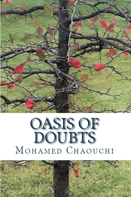 Oasis of Doubts